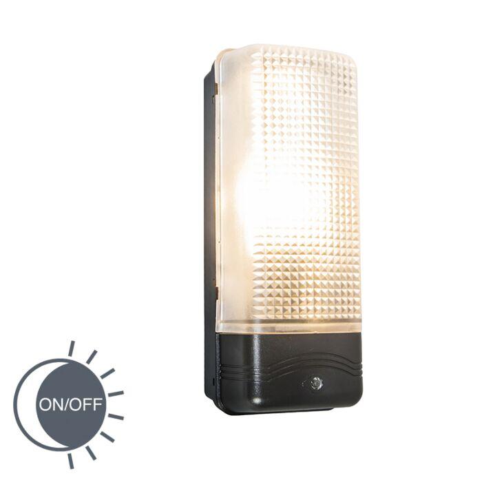Moderne-Außenwandlampe-mit-Dämmerungsschalter---Mossa