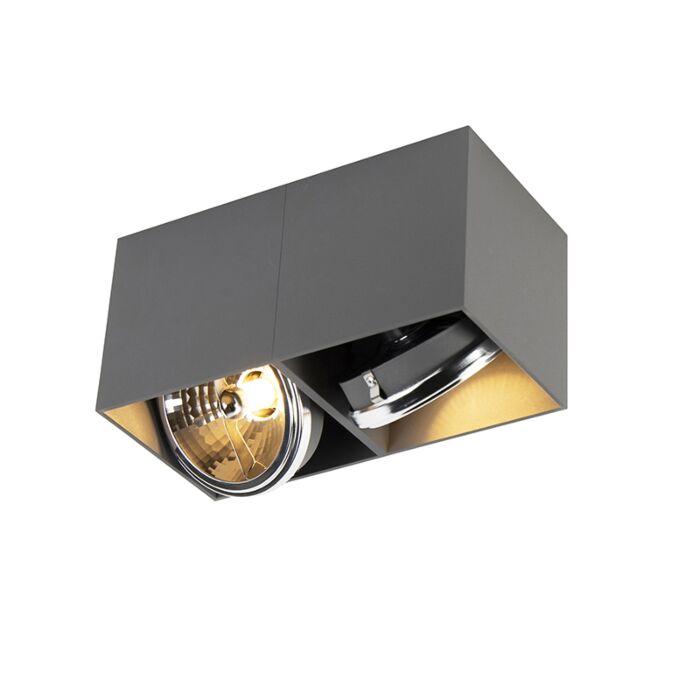 Design-Spot-dunkelgrau-2-Licht---Box